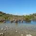 27 de wetlands,georgeoupolis