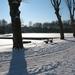 Provinciedomein in de sneeuw 001