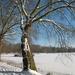 Provinciedomein in de sneeuw 015