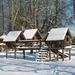 Provinciedomein in de sneeuw 031