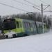 5008 Zuilenstein 21-12-2009