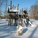 Provinciedomein in de sneeuw 042