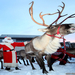 christmas-reindeer-wallpapers-2-1024x768