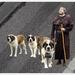 20130826_IGP7621_Monnik met drie honden_met achtergrond 2_72