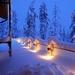 75565-winter-snow