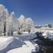 paisaje-nevado,-rio-218050