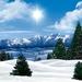 sun-shining-in-the-winter-2K-wallpaper
