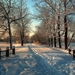 WallpaperFusion - Winter Landscape