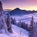 Winter-Sunset-Pictures