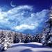 winter-wallpaper-9