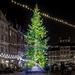 christmas-tree-3881255_960_720