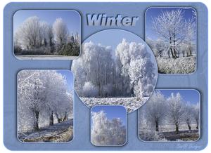 collage met mijn genomen foto's