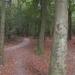 Herfst en Winter in Gaasterland (Friesland)