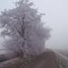 Winter in Gaasterland