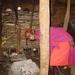 Masai hut
