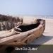 100_0084  Bart De Zutter