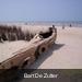 100_0085  Bart De Zutter