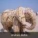 100_0091  Andries Botha