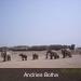 100_0093  Andries Botha