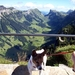 Zwitserland 2008 035