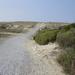 weg door de duinen
