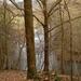 2009_03_15 Olloy-sur-Viroin 11