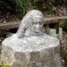 2009_03_15 Olloy-sur-Viroin 15
