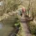 2009_03_01 Hulsonniaux 17 rivier Falmagne