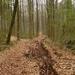 2009_04_12 Petigny 33