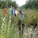 2007_08_10 Rommedenne 11 schepnet