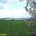 2009_04_19 Honnay 20