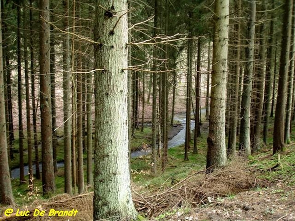 Ardennen Adeps wandeling Honnay Beauraing
