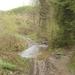 2009_04_19 Honnay 33