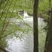 2009_04_26 Romedenne 08 Hermeton