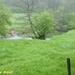 2009_04_26 Romedenne 14 vallée de l'Hermeton