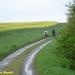 2009_04_26 Romedenne 21