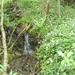 2009_05_03 Gochenée 20