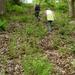 2009_05_03 Gochenée 27