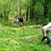 2009_05_03 Gochenée 28