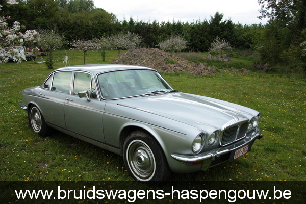 jaguar xj6 oldtimer trouwen gratis foto albums seniorennet. Black Bedroom Furniture Sets. Home Design Ideas