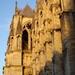 2006 Reims kathedraal zijgevel