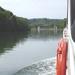 2009_05_09 Dinant 29 Freyr