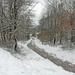 JSC_0011 Winterlandschap Cornimont