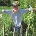 2009_05_24 Couvin 13