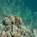 reis naar corfu 075