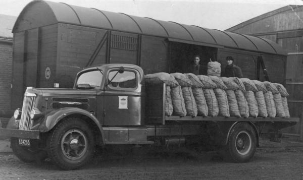 5. White lost aardappelen bij Friesche Plant