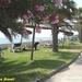 2009_05_30 San Pellegrino 13 gazon