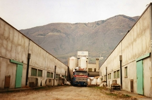 Lossen bij Italiaanse kalverboer