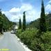 2009_06_02 110 vallée de la Restonica