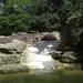 Nijlpaarden.Noorderdierenpark Emmen